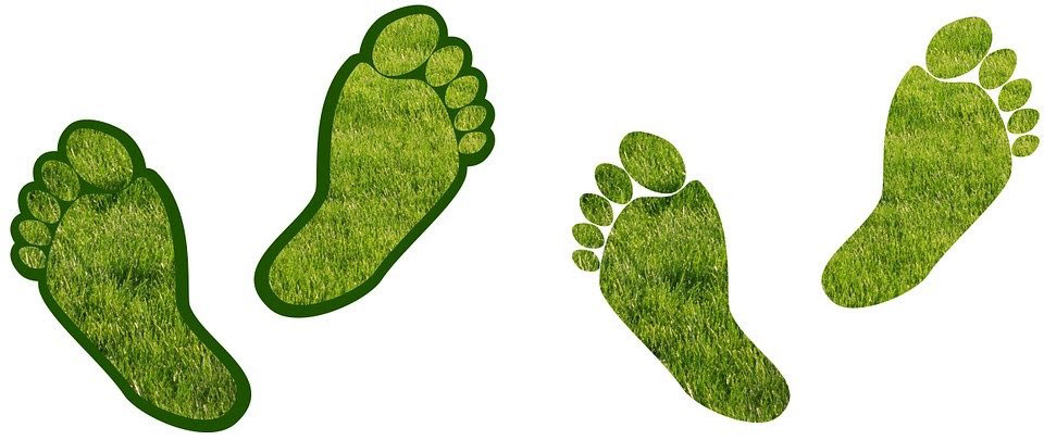 assessing your carbon footprint